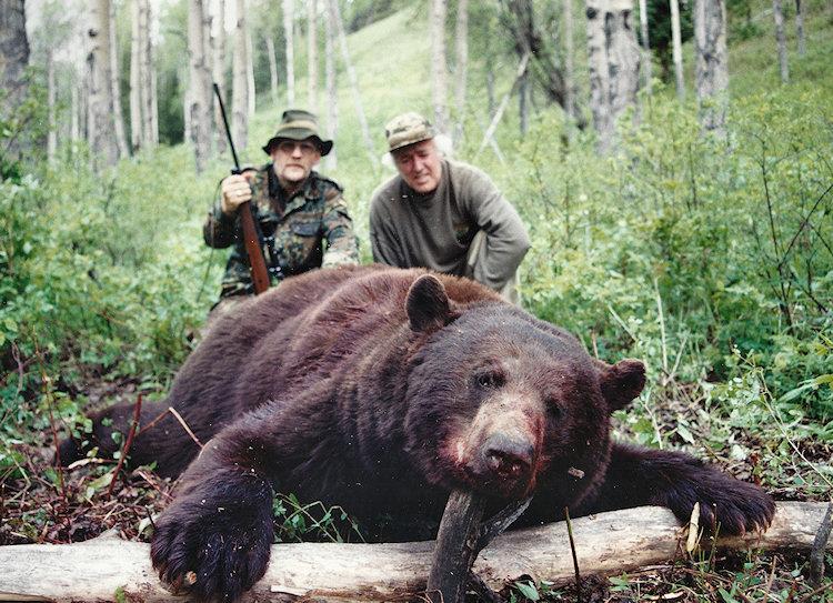 Prince George Canada >> BC Black Bear Hunts, Spring Black Bear Hunting with ...