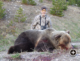 Grizzly Bear Hunting