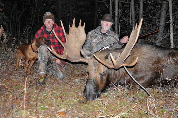 B Moose Hunting Welcome to Driftwood Valley
