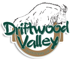Driftwood Valley