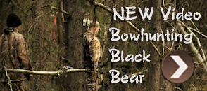 Bowhunting for Black Bear with Heartland Bowhunters